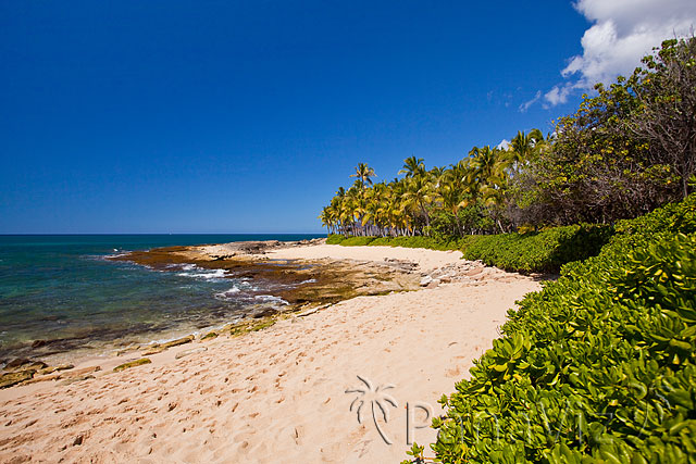 Hawaii Natural Beach