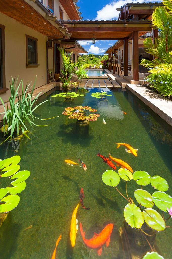 3250 a kalihiwai road hawaii luxury real estate photographer for Virtual koi fish pond